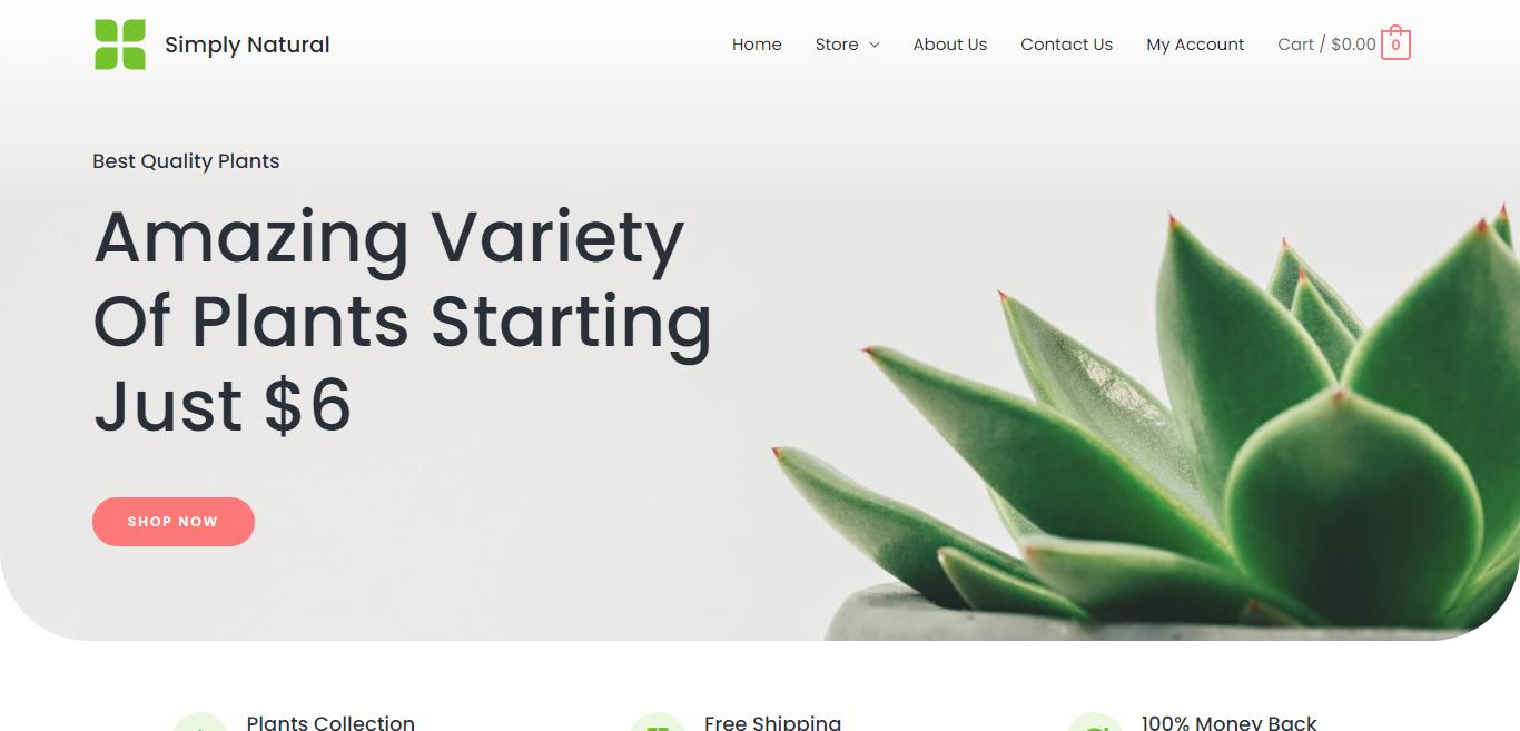 Jasa Pembuatan Website Toko Online 7